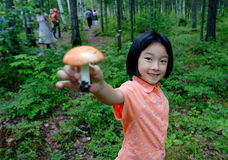 Girl. The little girl in the forest Stock Photo