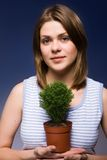 Girl. Beautyful girl with green tree Stock Photos