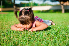 Girl. The girl searches in a grass of insects Royalty Free Stock Photo