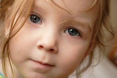 Girl. Young girl with big eyes looking into lens Royalty Free Stock Images
