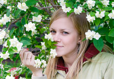 Girl. Young blonde at a bush of a jasmin Stock Images