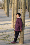 chinese child in small tree Royalty Free Stock Photo