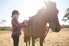 Girl adjusting saddle on horse in ranch Stock Images