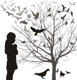 A girl admires the birds, vector illustrations. Vector illustrations girl looks at a tree full of birds Royalty Free Stock Images