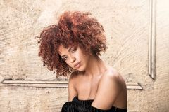 Girl with afro hairstyle posing. Beauty portrait of attractive young african american woman with afro hairstyle. Gold background Royalty Free Stock Images