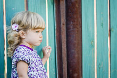 The girl against a country fence stock image