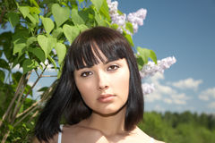 The girl against lilac bushes Stock Photos