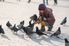 Girl age 6-8 years feeding pigeons at main square in old city Royalty Free Stock Photography