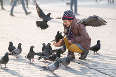 Girl age 6-8 years feeding pigeons at main square in old city Royalty Free Stock Photo