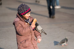 Girl age 6-8 years feeding pigeons at main square in old city Stock Photography