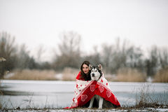 Girl with alaskan malamute dog wrapped  in blanket. Girl with alaskan malamute dog wrapped  in white-red blanket. They sit over winter lake Stock Photo