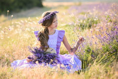 Beautiful girl in a field of lavender on sunset. royalty free stock image