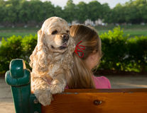 Girl with american cocker spaniel Stock Photo
