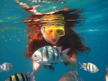 Girl Among Tropical Fish In Red Sea, Eilat, Israel Royalty Free Stock Images