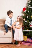 Girl And Boy Near A Fir-tree Stock Image