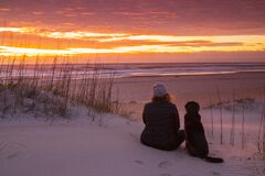 Free Girl And Dog Watching Sunrise In Outer Banks NC Stock Photos - 174963153