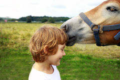 Free Girl And Horse Royalty Free Stock Photography - 17878967