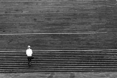 Girl And Many Stairs Royalty Free Stock Photos