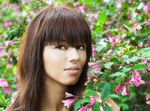 Girl ang flowers Royalty Free Stock Image