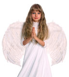 Girl in angel costume with book. Stock Photo
