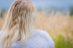 Girl with angel wings on the back Stock Photo