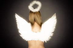 Angel wings and nimbus Royalty Free Stock Photos