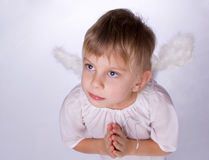Girl with angel wings praying. Little blond girl with angel wings praying Stock Images