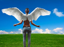 Girl with angel wings standing on the meadow. Girl with angel wings standing in front of the open empty meadow and blue sky full of white clouds at the horizon Royalty Free Stock Photo