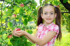 Girl with an apple Royalty Free Stock Image