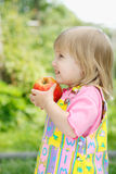 The girl with an apple. The little girl holds an apple in hands Royalty Free Stock Image