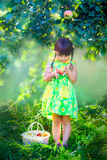 Girl with an apple brunch Royalty Free Stock Image
