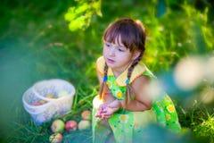 Girl with an apple brunch Stock Photos