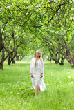 Girl in the apple orchard Royalty Free Stock Photos