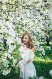 A girl in an apple orchard Royalty Free Stock Photo