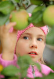 The girl and an apple-tree Royalty Free Stock Photos