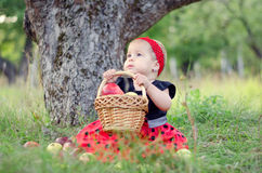 Girl with apples. Ittle girl sitting in the apple garden with wicker basket royalty free stock photo