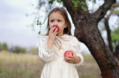 Girl with apples. Pretty little girl in white dress eating apples in the autumn garden royalty free stock photos