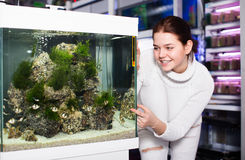 Girl in aquarium shop points to colored fish Royalty Free Stock Photos