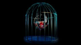 Girl art acrobatics in the twine hangs on a hoop in a cage. Black background. Girl art acrobatics in the string hangs upside down on a spinning hoop in a cage stock video footage