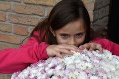 Girl and aster flower Stock Image