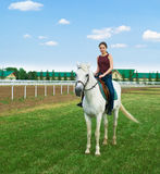 Girl astride a horse. The nice young girl astride a horse on a hippodrome Stock Photo