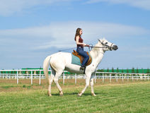 Girl astride a horse on a hippodrome. The serenity young girl astride a horse on a hippodrome Stock Image