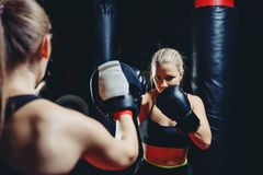 Girl athlete Boxing MMA. Girl backs hand Boxing paw fight gear reflects young blonde kick in front of sports kickboxing glove on dark blurred background stock image