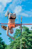 Girl athlete pole vault Royalty Free Stock Photo