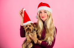 Girl attractive blonde hold dog pet pink background. Celebrate christmas with pets. Reason love christmas with pets. Have fun. Pet safety during christmas royalty free stock image