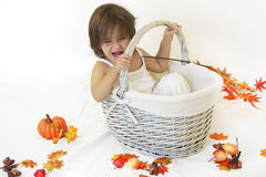 Girl and autumn basket Stock Photography