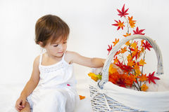 Girl and autumn branch Royalty Free Stock Image