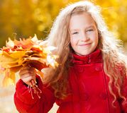 Little child at autumn Stock Images
