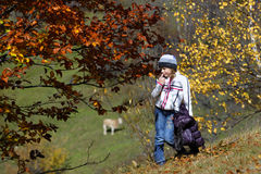 Girl in autumn countryside. Girl in countryside field by trees with colorful autumn leaves; farm animal in background Royalty Free Stock Photography