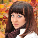 The girl in an autumn forest Stock Photos